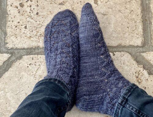 Gliding Birds : Les chaussettes de Tisserin-Coquet