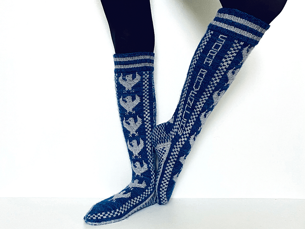 Tricot Chaussettes Ravenclaw Pride Socks 1
